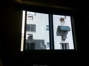 minha janela no brasil. ironicamente ela esta quase fechada nessa foto rs